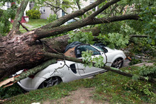 Neighborhood Storm Damage Afte...