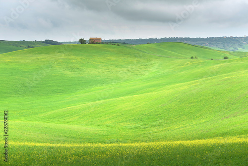 In de dag Lime groen Idyllic scenery of a farmhouse in green grassy fields with rolling hills on a cloudy spring day in Tuscany, Italy