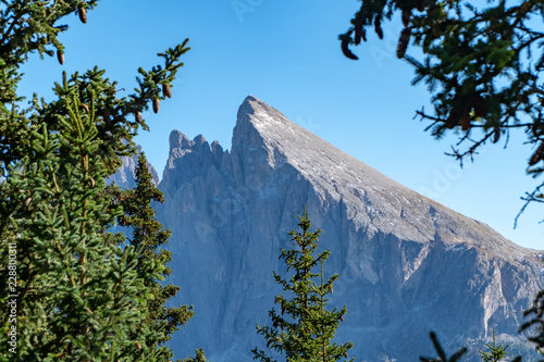 Fotografie, Obraz  Eine Wanderung auf der Seiser Alm im Herbst bei blauem Himmel