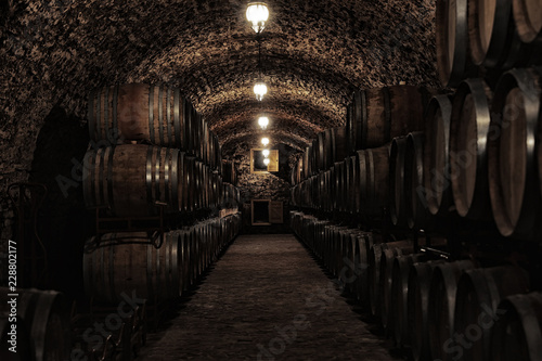 Photo Wine cellar interior with large wooden barrels