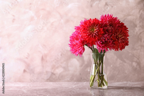 Beautiful dahlia flowers in glass vase on table against color background. Space for text