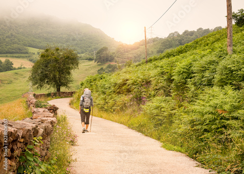 Leinwand Poster Lonely Pilgrim with backpack walking the Camino de Santiago in Spain, Way of St
