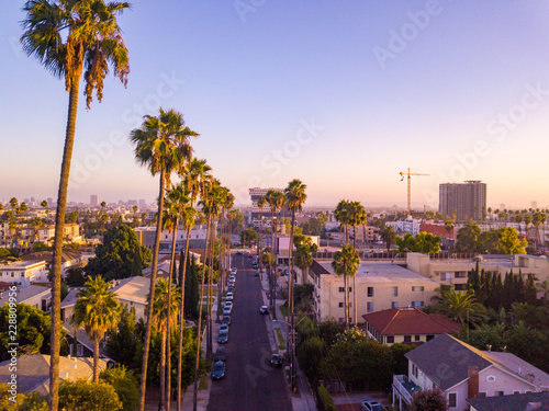 Fotomural Beverly Hills street with palm trees at sunset in Los Angeles with Hollywood sign on the horizon