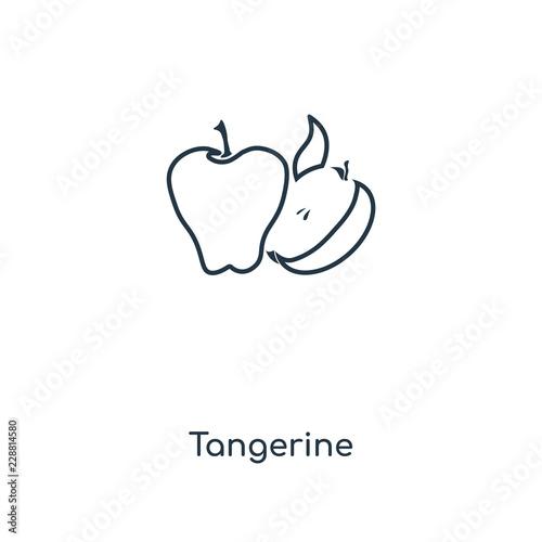 tangerine icon vector