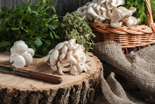 Raw Oyster Mushrooms With Knif...