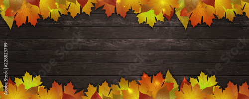 fototapeta na drzwi i meble autumn leaves banner