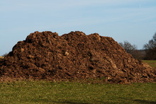 Large Dung Or Much Heap