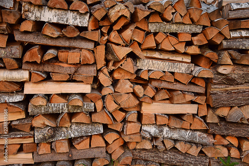 Chopped and stacked birch firewood as a natural background