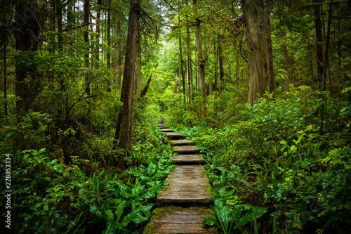 Fotografía  Ozette Stairs