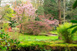 Clingendael park at spring with blooming flowers, Den Haag, Holand Netherlands