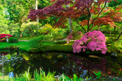 Fotografia, Obraz green grass and blooming trees over river in japanese garden in The Hague, Nethe