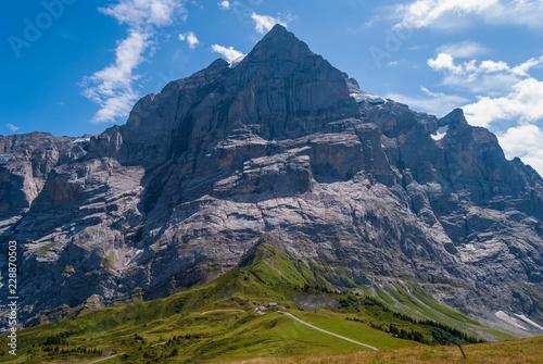 Fototapety, obrazy: Beautiful Alpine landscape with peak of wetterhorn, Grindelwald Bernese Oberland Switzerland Europe
