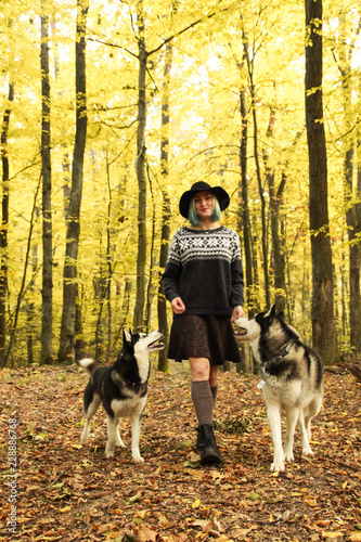 86a2782847e58 Two Siberian Husky walk in the autumn forest with their mistress. Girl in a  hat in a knitted sweater and skirts with leggings. Black and white dogs and  ...