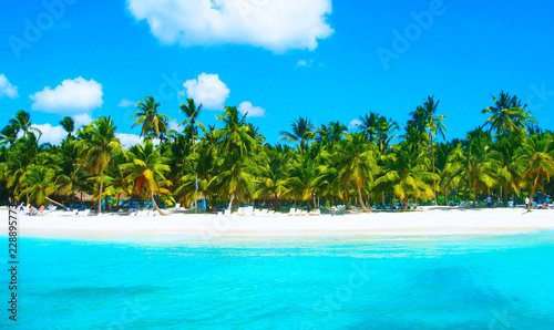 Photo  Tropical beach in caribbean sea, Saona island, Dominican Republic