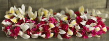 A Colorful Hawaiian Lei . A Lei Is A Garland Or Necklace Of Flowers Given In Hawaii As A Token Of Welcome Or Farewell.