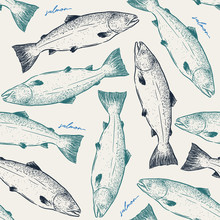 Salmon,seamless Pattern Sketch Vector.
