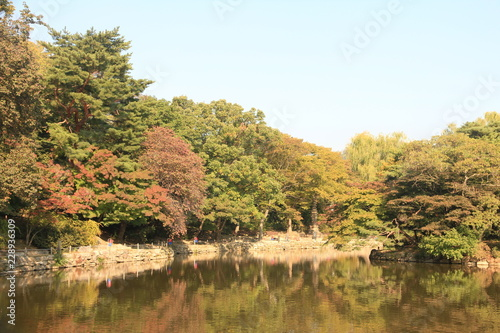 Photo  Garden inside Changgyeonggung Palace in Seoul, South Korea