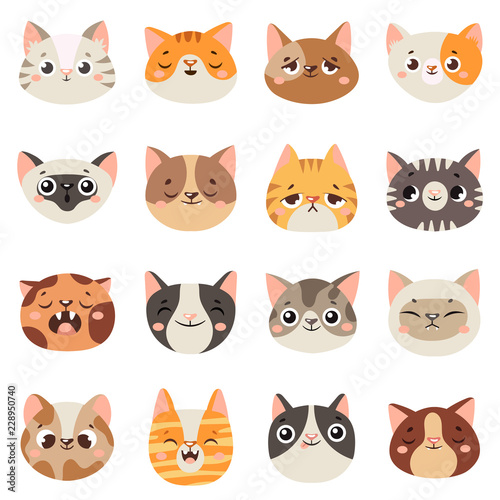 Cute Cats Faces Happy Animals Funny Kitten Smiling Mouth And