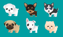 Cute Puppy Vector Set Pomeranian,chivava,pug And Others