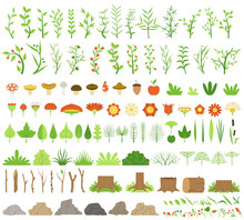 Vector Illustration. Botanical Collection. Branches, Stumps, Flowers, Herbs, And Other Natural Elements.