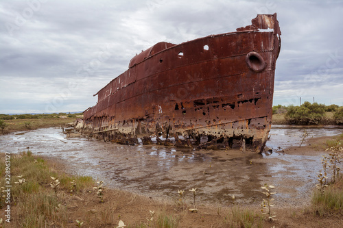 Fotografie, Obraz  Excelsior Ship Wreck, Mutton Cove, Port Adelaide, SA