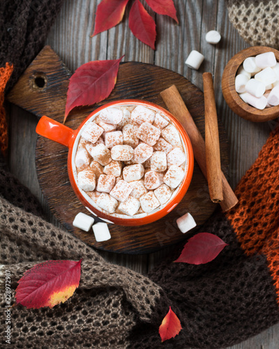 Cocoa in an orange cup with marshmallows