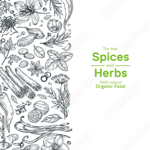 Fotografía  Hand drawn herbs and spices background