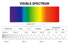 Visible Light Diagram. Color E...