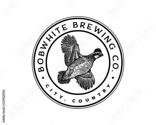 Fototapeta Hand Drawn Animal Vector Flying Bobwhite Bird Sign Symbol Company Vintage Logo C