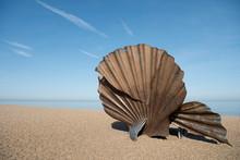 Scallop Sculpture On Beach