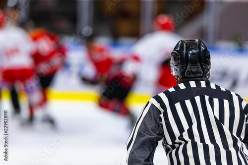 Ice hockey referee during a hockey game