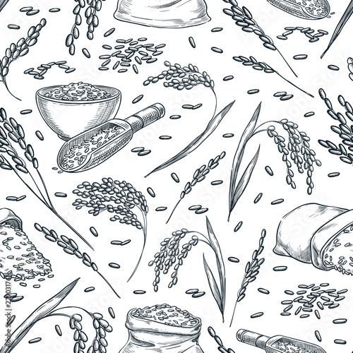 Rice cereal ears, vector seamless pattern Fototapeta