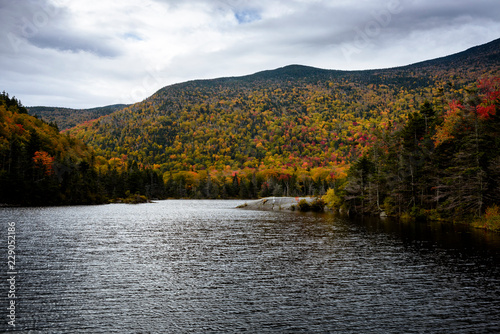 Beaver pond in the white moutains during fall