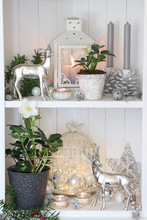 Christmas Decoration In White ...