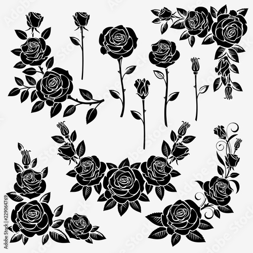 Collection of roses #229064769