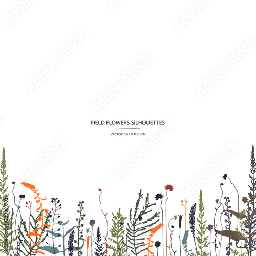 Vector silhouettes collection. Set of field herbs, flowers. Card design. Cover design. Fototapete