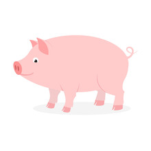 Pink Pig With Curly Tail On White Background.
