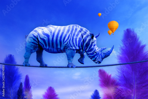 Photo Blue Rhino walking on rope