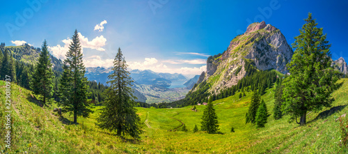 Beautiful summer landscape of Switzerland with Grosser Mythen mountain and green Canvas Print