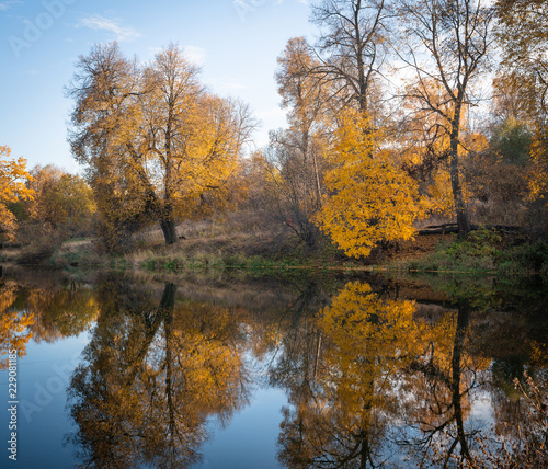 Fototapety, obrazy: Beautiful autumn park, lit by the sun and the lake