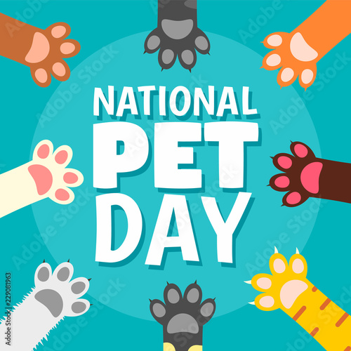 Fotografía  National pet day paw concept background