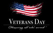 Veterans day cover with flag on black background