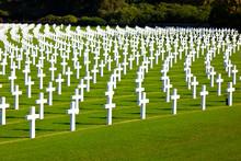 Military Cemetery Crosses, Bel...