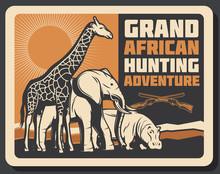 African Safari Animals Hunting, Vector