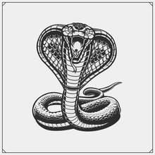 The Emblem With King Cobra For...