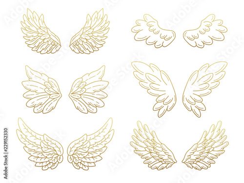 Fényképezés  Collection of angel wings, wide open with golden metallic effect