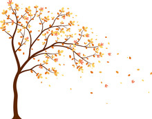 Autumn Season With Falling Leaves With Bird For Wallpaper Sticker