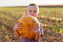 Little Boy Carrying Pumpkin In...