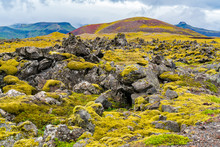 Typical View Of Icelandic Mossy Lava Field