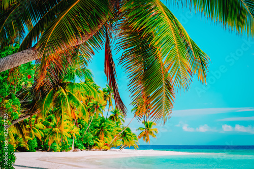Poster Turquoise tropical sand beach with palm trees, vacation